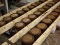 cookiespanettonecroissants-073
